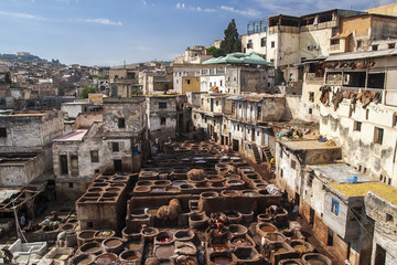 view of old medina in Fes