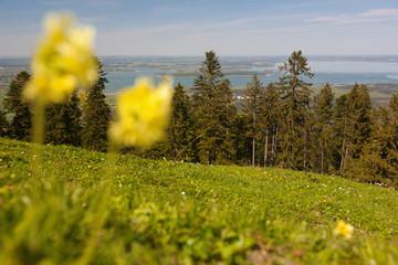 Fotomurales - Kraimoos; Lindlalm; Reifenberg, Panoramaweg