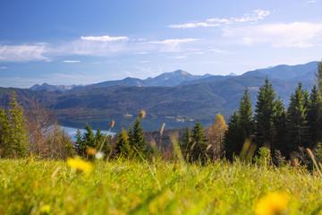 Fotomurales - Walchensee, Karwendellandschaft, Blumenwiese