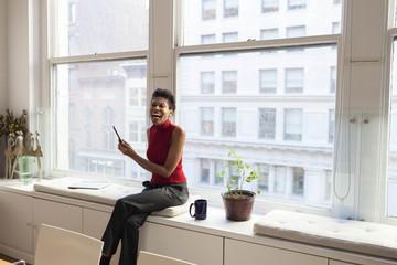 Portrait of a professional businesswoman