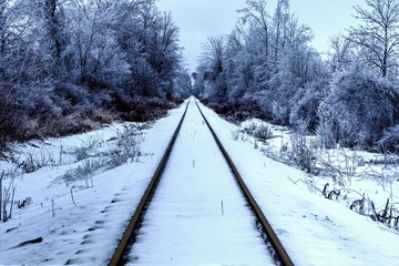 Arctic Express. Railroad tracks traverse through the beauty of a northern winter wonderland