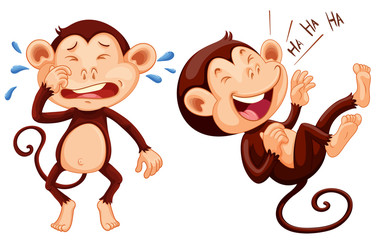 Monkey crying and laughing