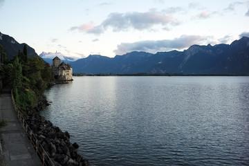 Summer lake shore landscape