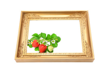 Strawberries in the frame for a picture