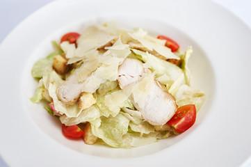 Caesar salad with chicken on white plate studio shot