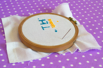 The embroidery hoop with canvas print, the needle, child to learn to embroider