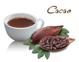 Cacao drink for your design