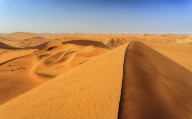 Sand dunes shaped by wind, Deadvlei, Sossusvlei, Namib Desert, Namib Naukluft National Park, Namibia, Africa