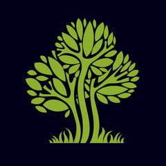 Artistic stylized natural design symbol, creative tree illustrat
