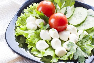 Mozzarella, tomatoes and sliced cucumber with green lettuce and parsley on black plate