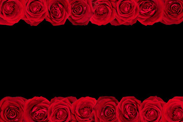 Red roses arranged in lines. Black background.