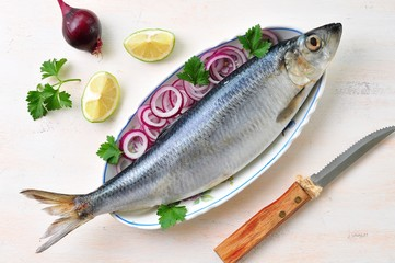 herring with red onion, lime and parsley
