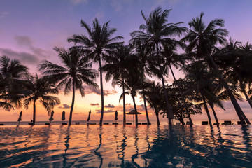 Beautiful view of tropical hotel, palm trees, swimming pool, sun