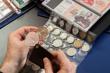 Numismatists examines  collection of coin