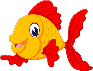 golden fish photos royalty free images graphics vectors videos