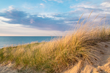 Beach Background. Sand dune and dune grass with a blue sky and blue water horizon in the background.