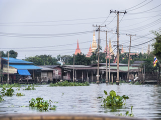 Khlong mit Wasserhyazinthen