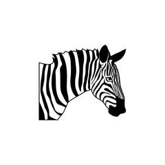 Zebra logo.Vector