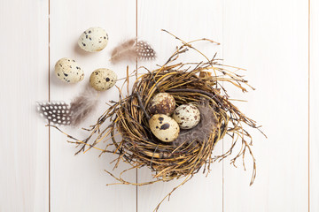 quail eggs in nest on wooden background