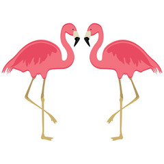 Two pink flamingo