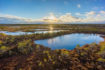 Kemeri swamp landscape