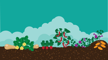 Kitchen vegetable garden flat design. EPS 10 vector stock illustration