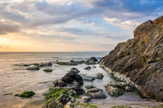 rocks and seaweed on rocky coast of the sea