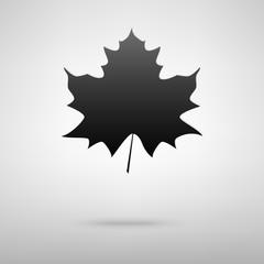 Leaf black icon