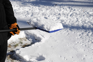 shovel the snow
