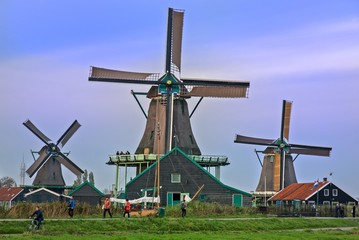 Foto auf Acrylglas Mühlen Zaanse Schans, Olanda