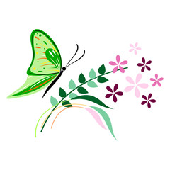 Vector illustration of insect, green butterfly, flowers and branches with leaves, isolated on the white background