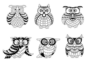 Black and white owls outline silhouettes