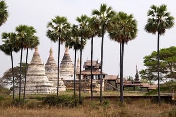 pagoda w Bagan w otoczeniu palm