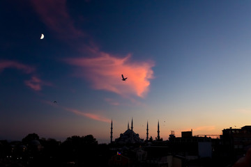 Twilight urban View of historical District of Istanbul City with Sea Gulls