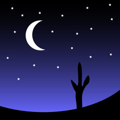 Desert with cactus plants at night. Vector illustration.