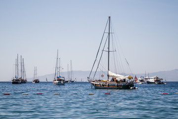 Touristic Sail Boats Near the Beach of Bodrum