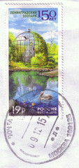 Russia - CIRCA 2015: A Stamp printed in Russia shows image of pelican and birds in aviary from the series 150th anniversary of Leningrad Zoo, circa 2015