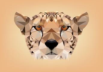 ghepardo low poly