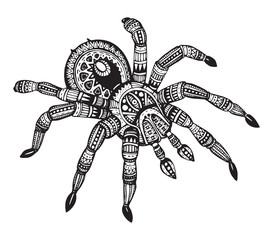 Vector hand drawn ornate spider in zentangle style.
