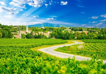 Vignes et village en France