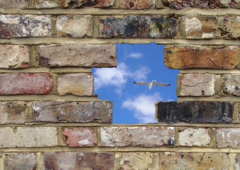 Opening in a brick wall, blue sky and seagull