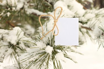 Winter greeting card. Blank note paper twine bow snowy pine boughs