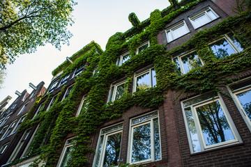 Traditional house close-up. Amsterdam - Netherland.