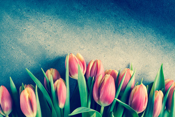 Bouquet of tulip flowers on background with copy space.