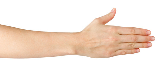Female hand offering handshake isolated on white background, cop