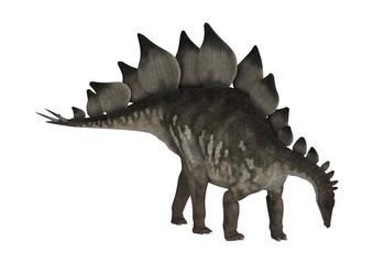 Dinosaur Stegosaurus