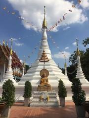 pagoda and buddhist statue
