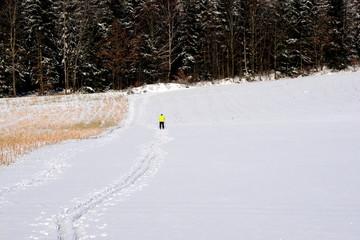 der lange Weg, einsamer Langläufer