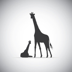 Vector silhouette of mother giraffe with her baby