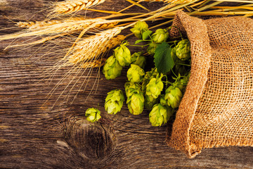 Barley and hop cones on  rustic wooden background. Beer brewing ingredients